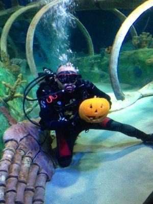 Sea Life Arizona Pumpkin Carving - Facebook