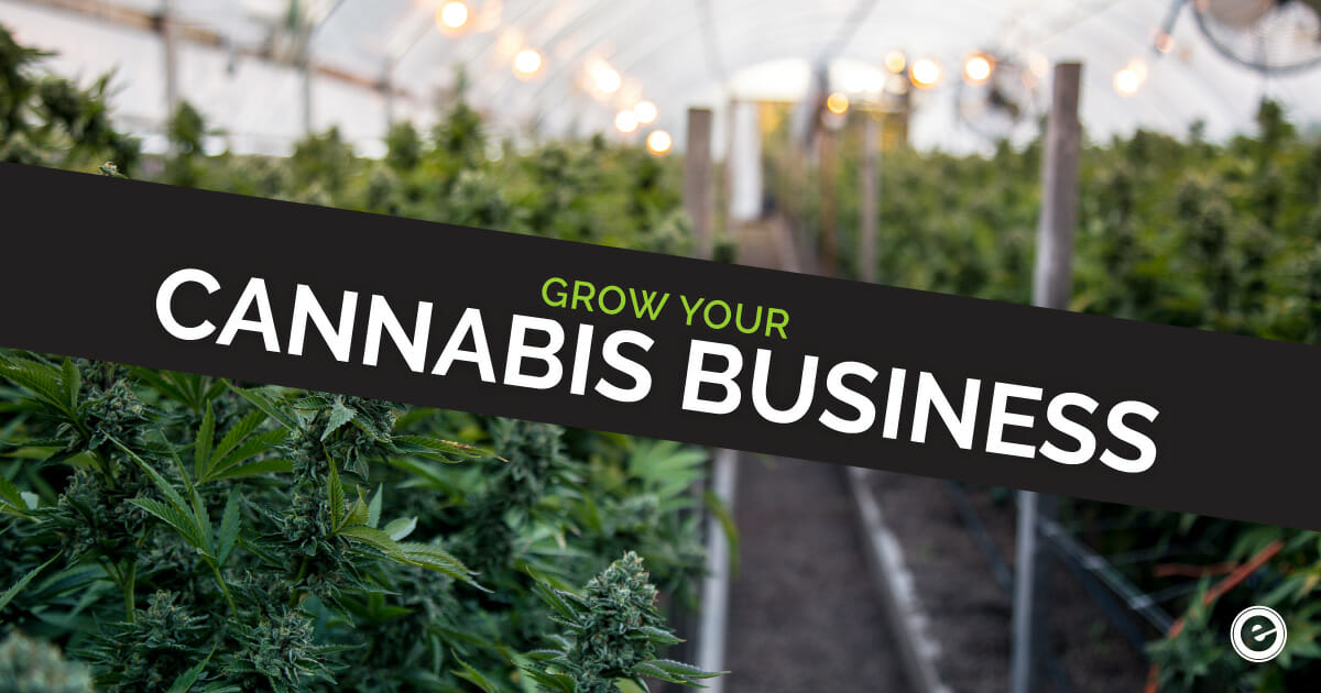 Grow Your Cannabis Business with These Marketing Tips